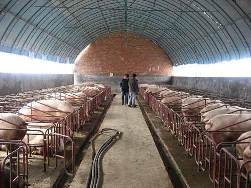 枣庄市水产品养殖温室造价
