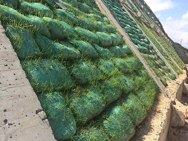 重庆植被生态袋型号