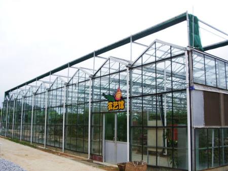 智能连栋温室,冬暖式蔬菜大棚,智能连栋温室承建