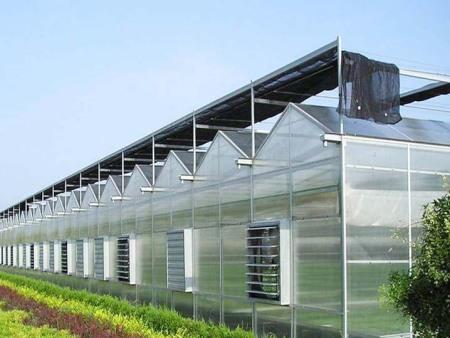 玻璃温室大棚,玻璃温室建造商,玻璃温室工程