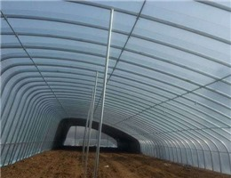 安陽地膜供應廠家-天水哪里有供應高品質安陽地膜