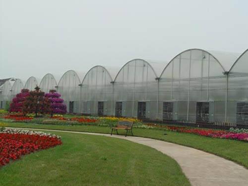 河北花卉溫室大棚施工