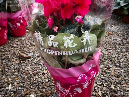 花卉包装袋价格,花卉包装袋批发,花卉包装袋加工