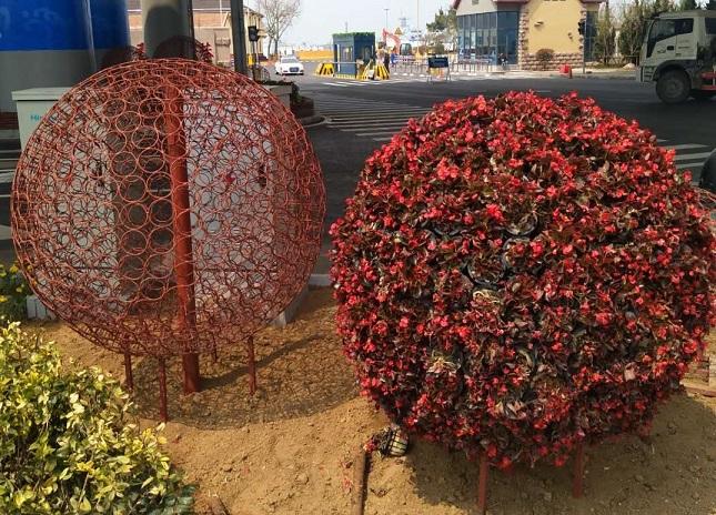 铁艺花球设计