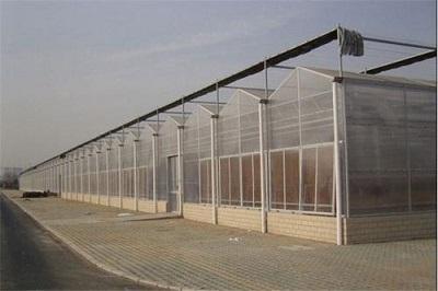 玻璃板温室