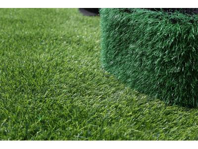 陇南人工草坪