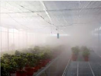 广西假山冷雾厂家