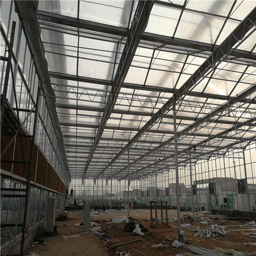 云南阳光板温室材料造价预算