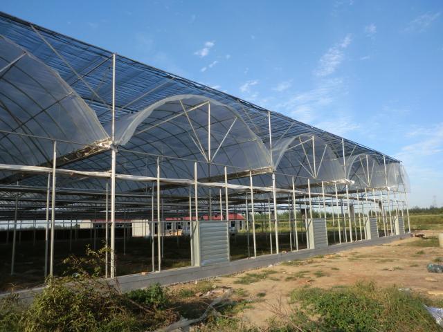 北京连栋智能温室造价多少钱一平