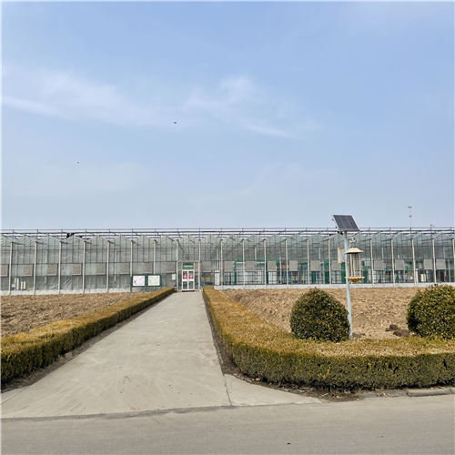 河北种植玻璃大棚种类