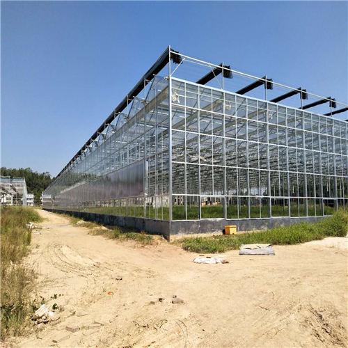 河北智能玻璃大棚造价预算