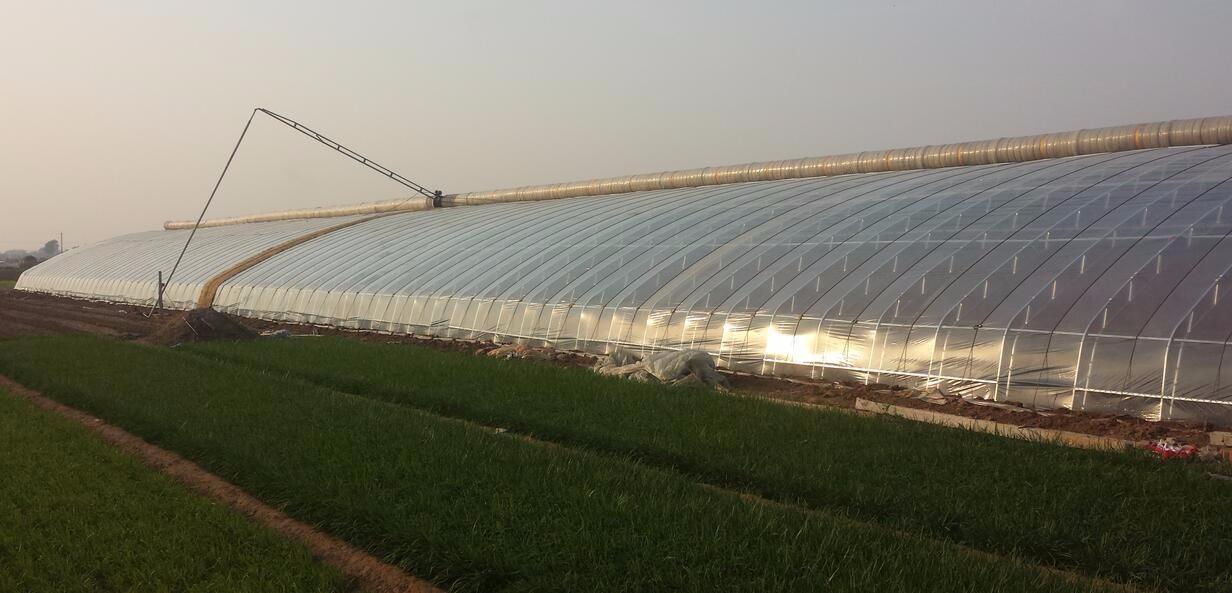 湖南农业大棚施工
