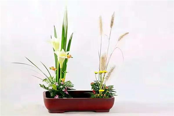 河南鲜花花卉培训公司