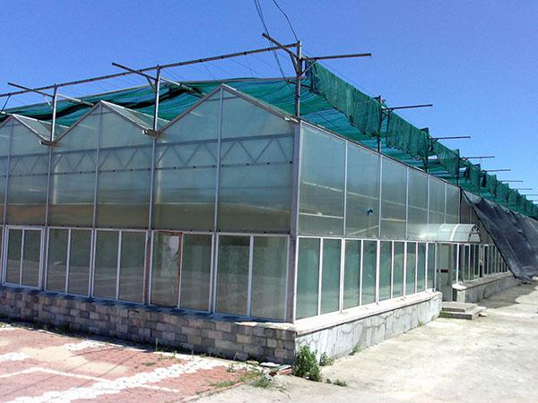 山东阳光板温室工程 蔬菜阳光板温室搭建 安装pc板大棚