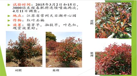 南京禾稼春植物葉面肥-氨基酸肥-專利品牌