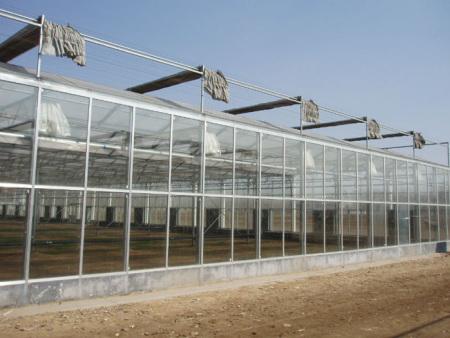 湖南紋絡式蔬菜薄膜溫室多少錢