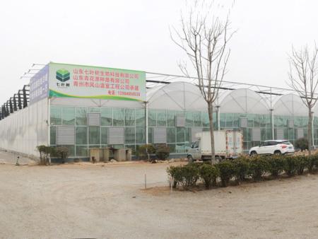 湖北生態玻璃溫室建設廠家