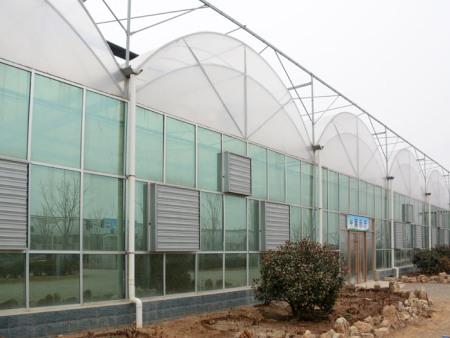 安徽育苗玻璃溫室哪里有