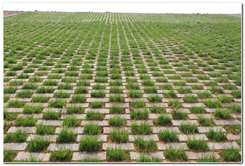 陕西生态阶梯护坡-宝鸡生态水利护坡砖厂家