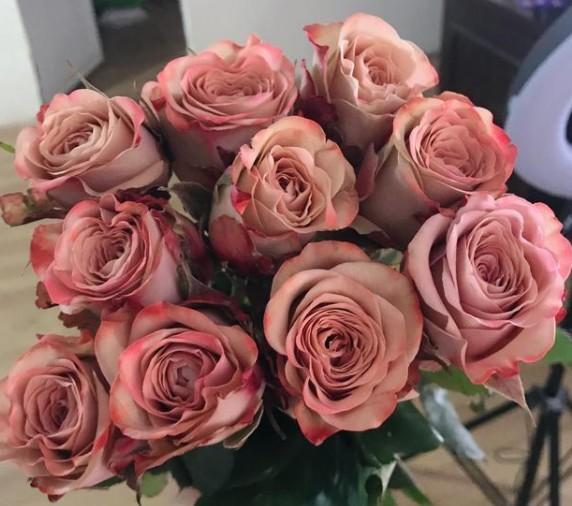 如何選購玫瑰花-肯尼亞玫瑰上衣-薰衣草花