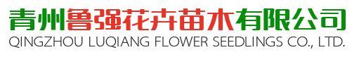 青州魯強花卉苗木有限公司