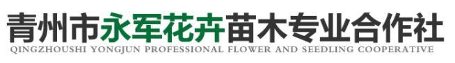 青州市永军花卉苗木专业合作社