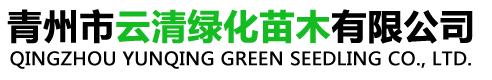 青州市云清绿化苗木有限公司