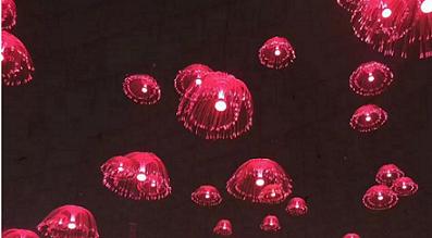 廣東水母燈定做