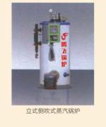 立式燃油蒸汽锅炉_锅炉厂家-衡阳腾飞锅炉