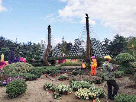 吉林立体造型花坛制作,立体造型花坛策划