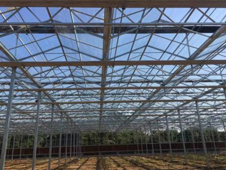 貴州溫室工程建設,陽光板房溫室哪里有