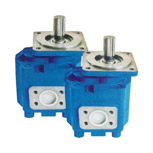 海南CBGJ2高压齿轮油泵批发