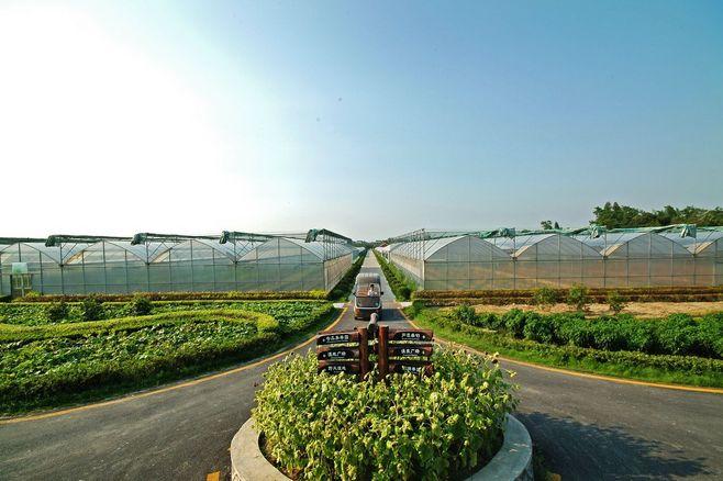 观光农业体验/观光农业活动/观光农业旅游