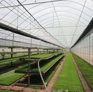 湖南智能温室大棚搭建