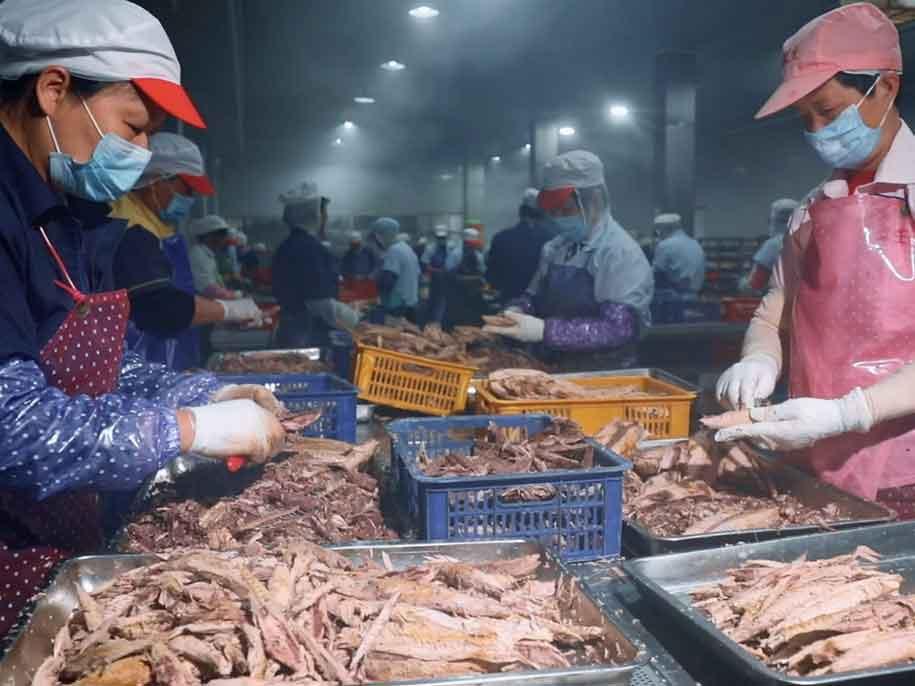 海鱼罐头OEM