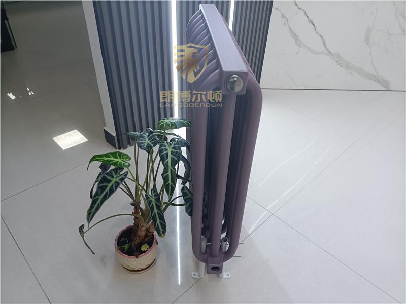 朗博爾頓電廠用鋼制弧管散熱器廠家